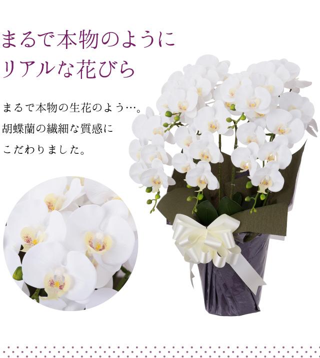 まるで本物のようにリアルな花びら/まるで本物の生花のよう…胡蝶蘭の繊細な質感にこだわりました。