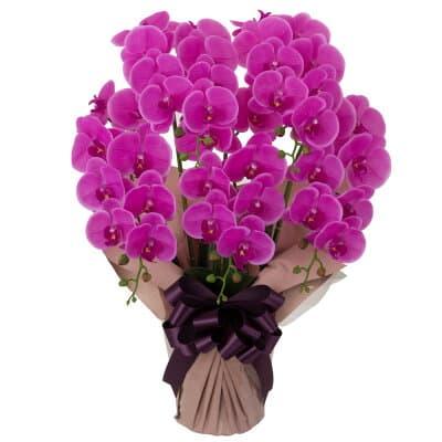 胡蝶蘭 5本立ち お供え花 アートフラワー(造花) ピンク