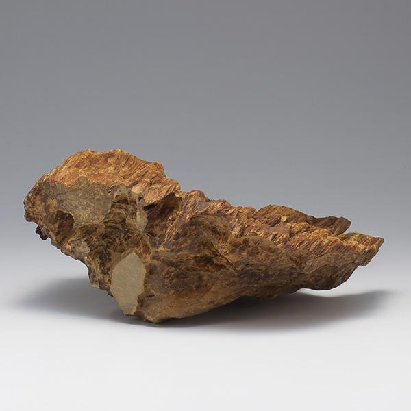 沈香(じんこう) 原木姿物 特上タニ沈香 740g