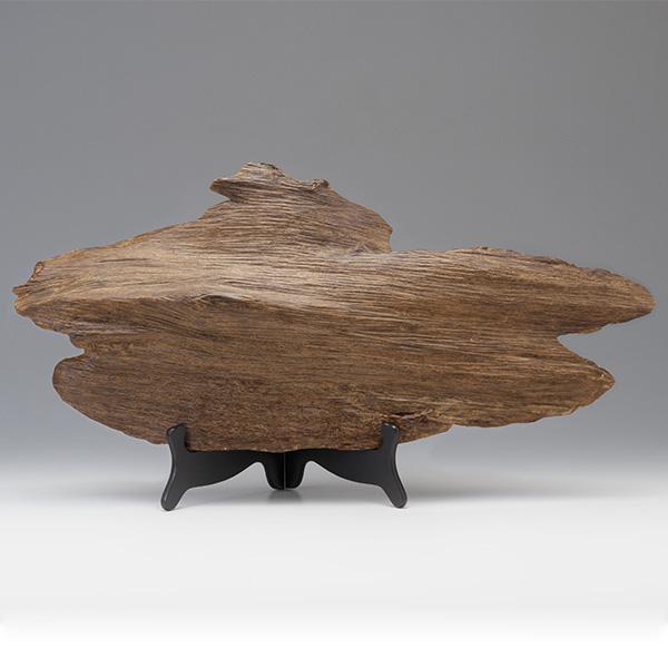 プレミアム沈香(じんこう) 原木姿物 「雲龍」 極上タニ沈香 2300g
