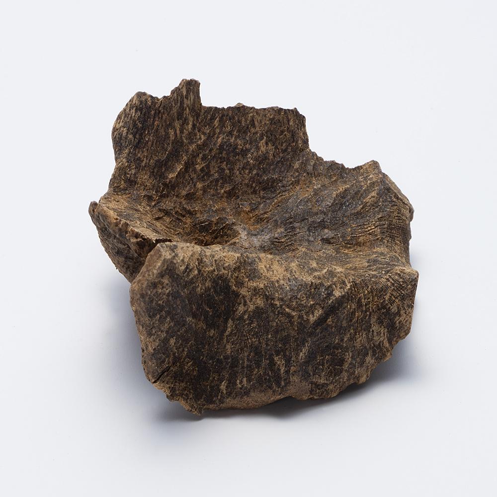 プレミアム沈香(じんこう) 原木姿物 沈水 極上シャム沈香 6g C