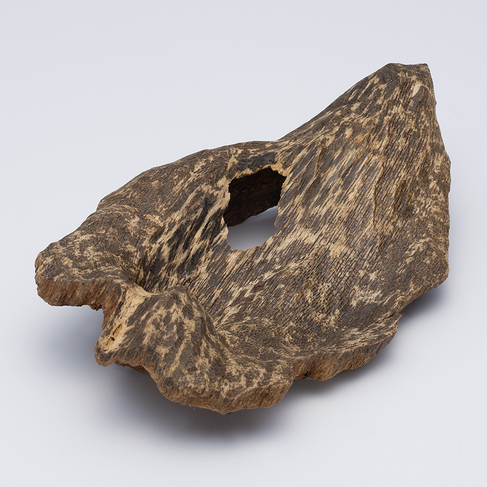 プレミアム沈香(じんこう) 原木姿物 沈水 極上シャム沈香 12g
