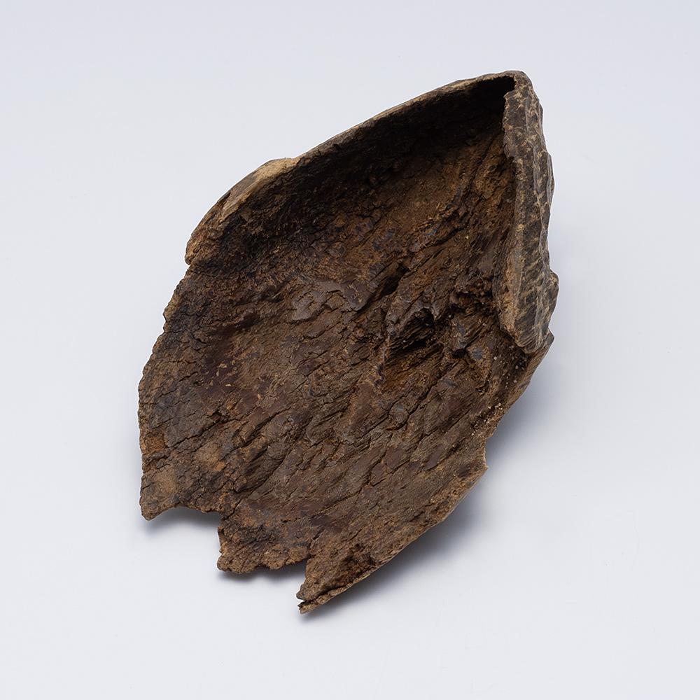 プレミアム沈香(じんこう) 原木姿物 沈水 極上シャム沈香 17g