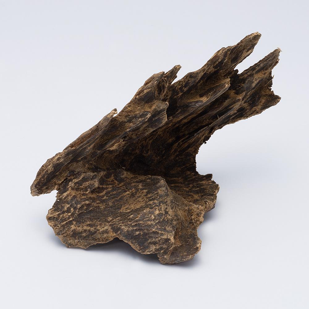 プレミアム沈香(じんこう) 原木姿物 沈水 極上シャム沈香 23g A