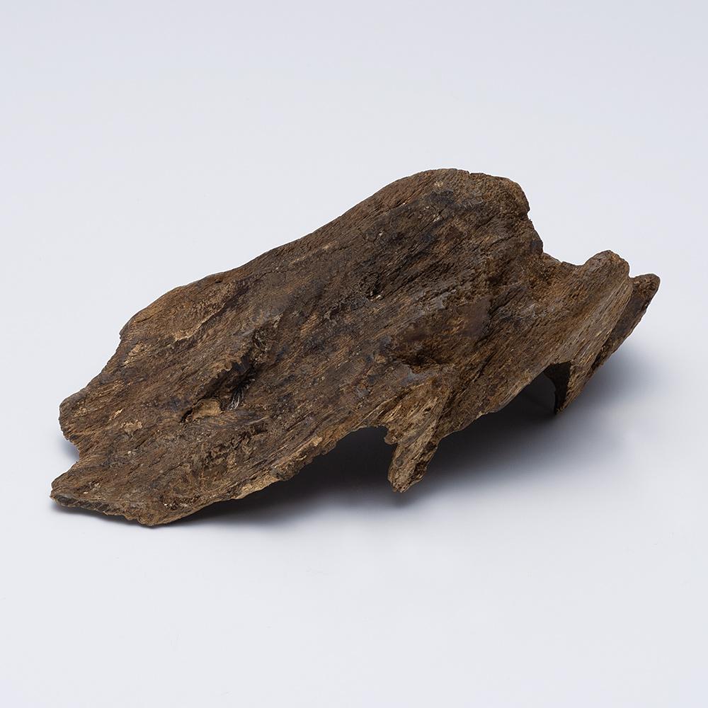 プレミアム沈香(じんこう) 原木姿物 沈水 極上シャム沈香 31g