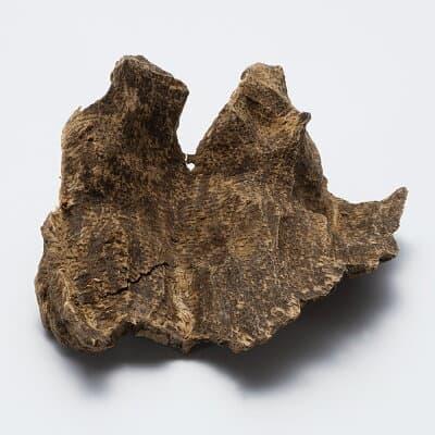 プレミアム沈香(じんこう) 原木姿物 沈水 極上シャム沈香 6g A