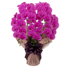 胡蝶蘭 5本立ちお供え花 アートフラワー(造花)ピンク