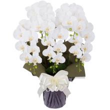 胡蝶蘭 5本立ちお供え花 アートフラワー(造花)ホワイト