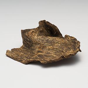 プレミアム沈香(じんこう) 原木姿物 「黒沈梗」 馬蹄 極上シャム沈香 6g