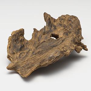 プレミアム沈香(じんこう) 原木姿物 「黒沈梗」 馬蹄 極上シャム沈香 12g