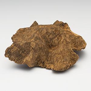 プレミアム沈香(じんこう) 原木姿物 「沈梗」 馬蹄 極上シャム沈香 27g