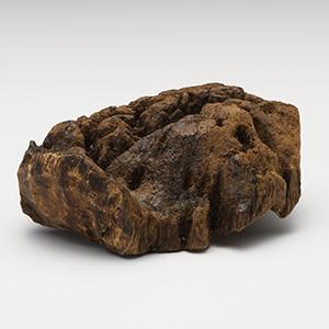 プレミアム沈香(じんこう) 原木姿物 「沈梗」 馬蹄 極上シャム沈香 31g